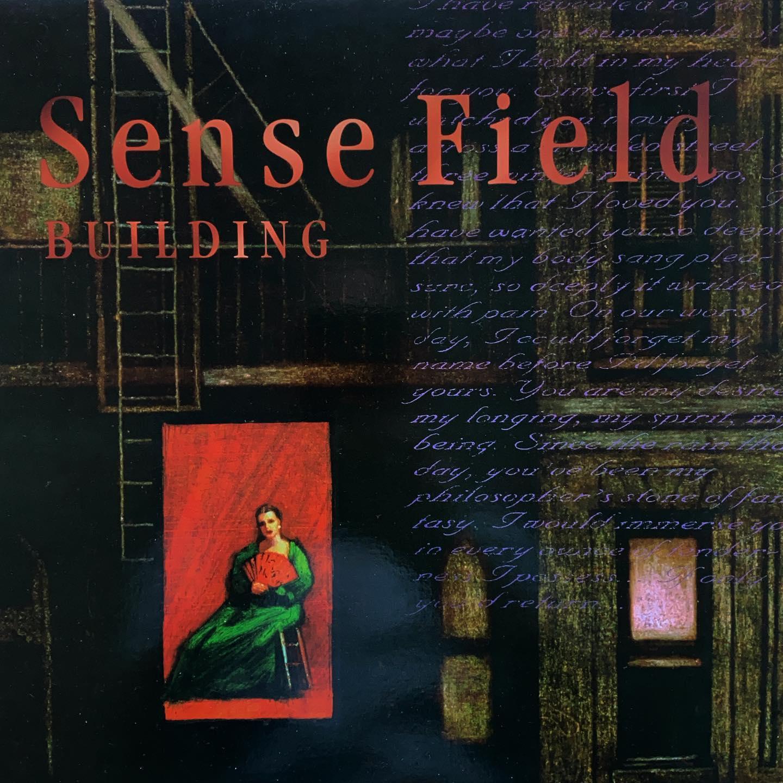 Sense Field - Building #vinyl  #nowspinning