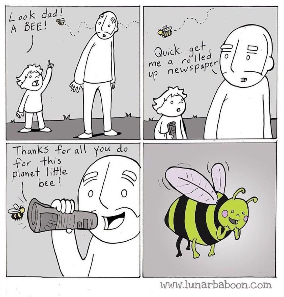 Einstein vatte het als volgt samen: Geen bijen, geen bestuiving, geen planten, geen dieren, geen mensen.  #bijen #jonggeleerdisoudgedaan @isalabijenstand