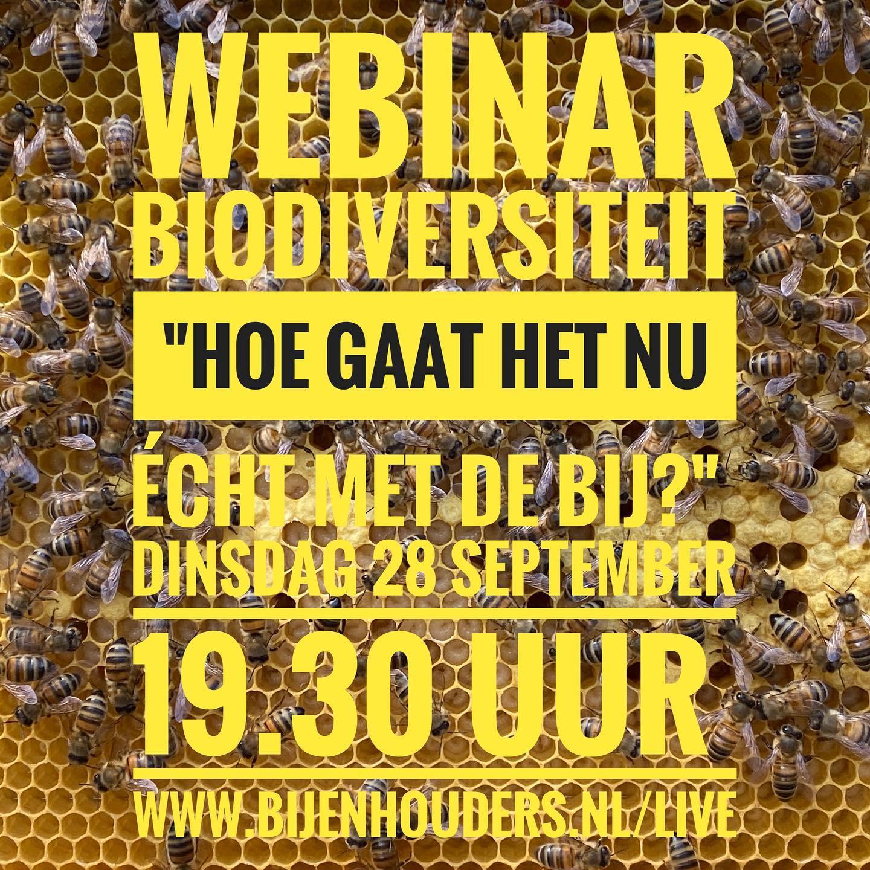 Hoe gaat het nu écht met de bij? Op dinsdag 28 september om 19.30 uur a.s. organiseert de NBV voor iedereen die geïnteresseerd is een gratis webinar over biodiversiteit en bijen.  #webinar #bijen #biodiversiteit #gratis @isalabijenstand